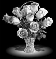 Цветок-И1