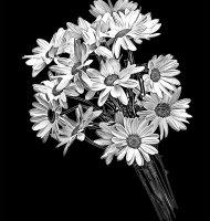 Цветок-Ы