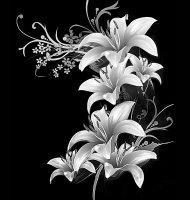 Цветок-Т1