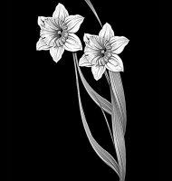 Цветок-Ц1