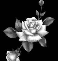 Цветок-Ю1