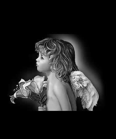 Ангел-Н