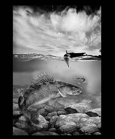 Рыбалка-А