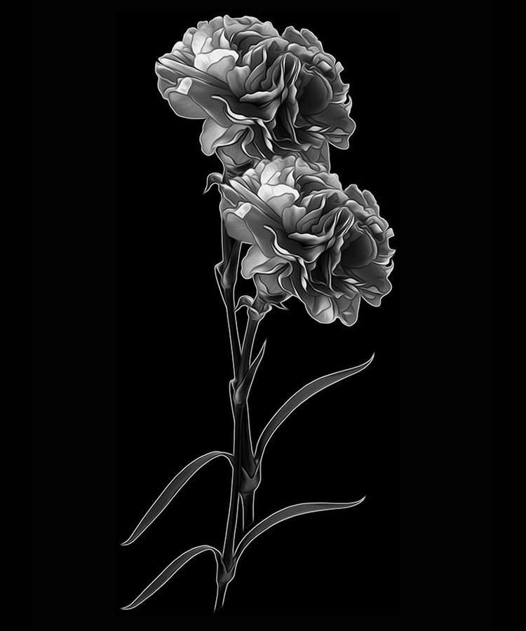 Цветок-Б1