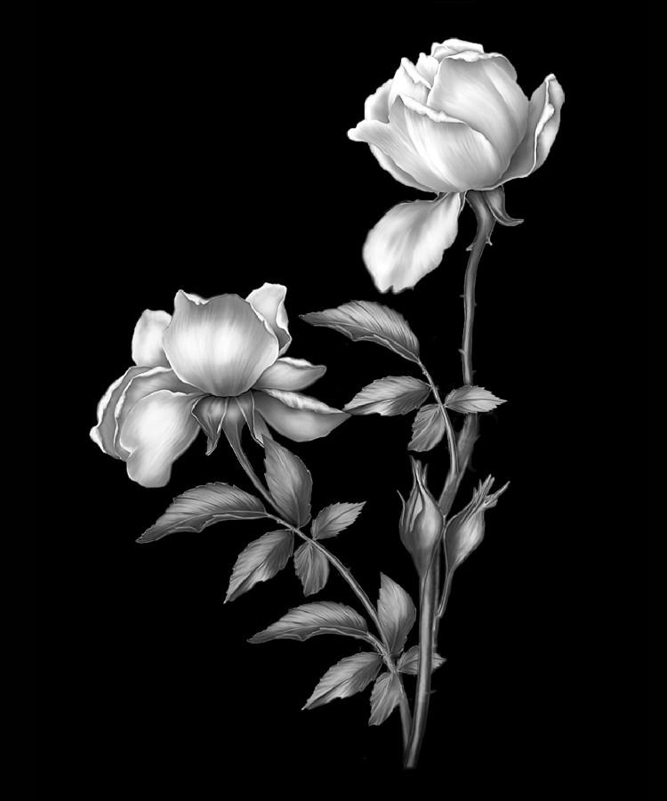 Цветок-Д2
