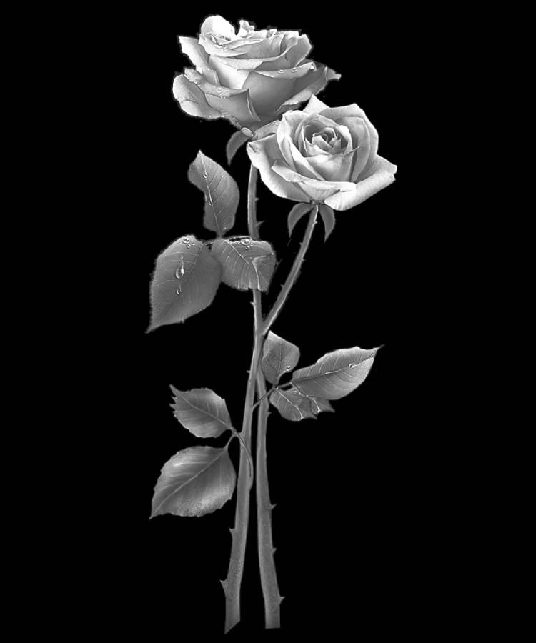 Цветок-Э1