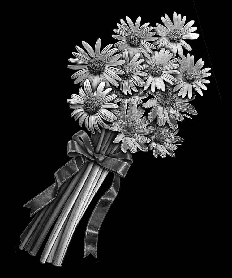 Цветок-Ф