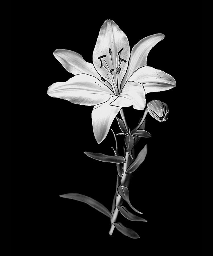 Цветок-Ф1