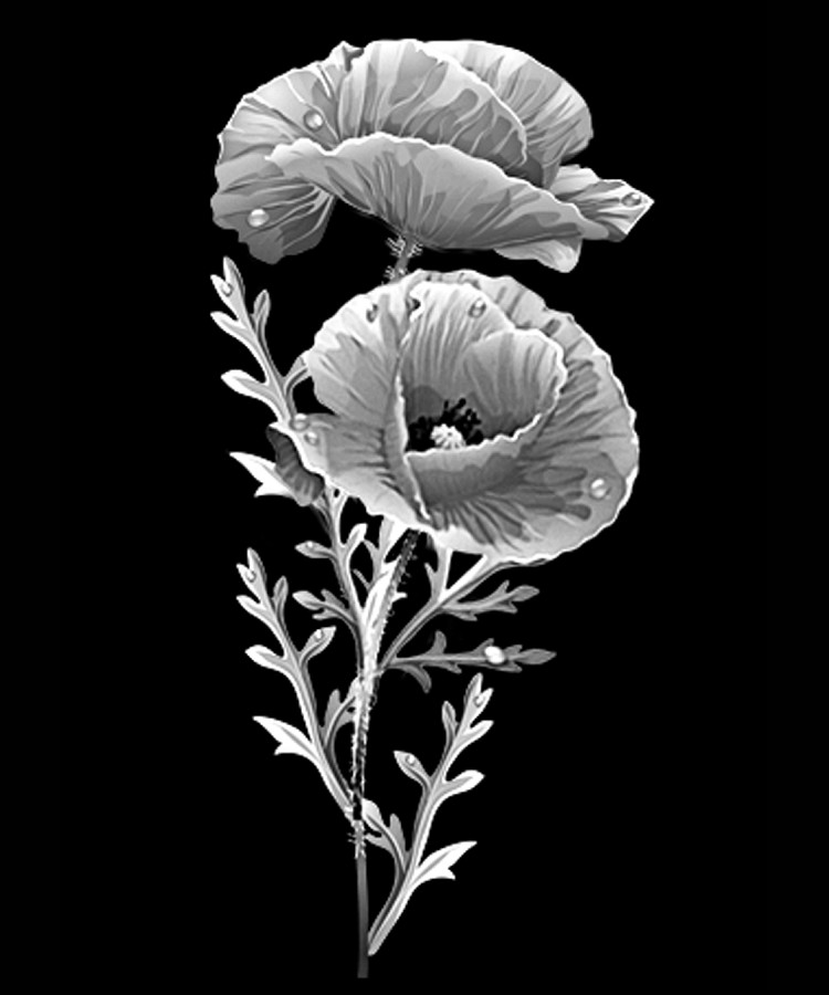 Цветок-Х1