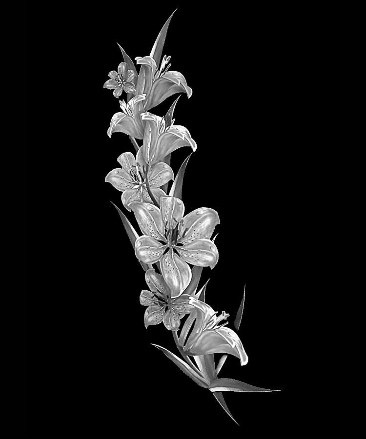 Цветок-С1