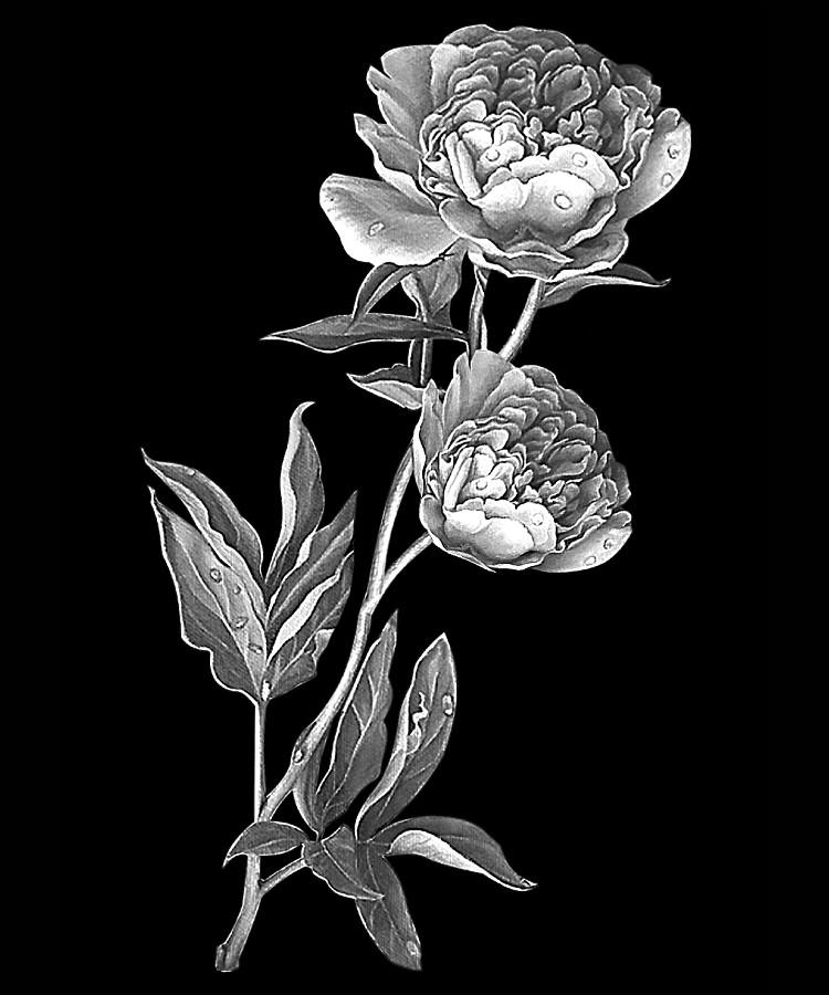 Цветок-Щ1