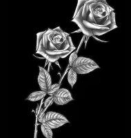 Цветок-Ж2