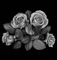 Цветок-К